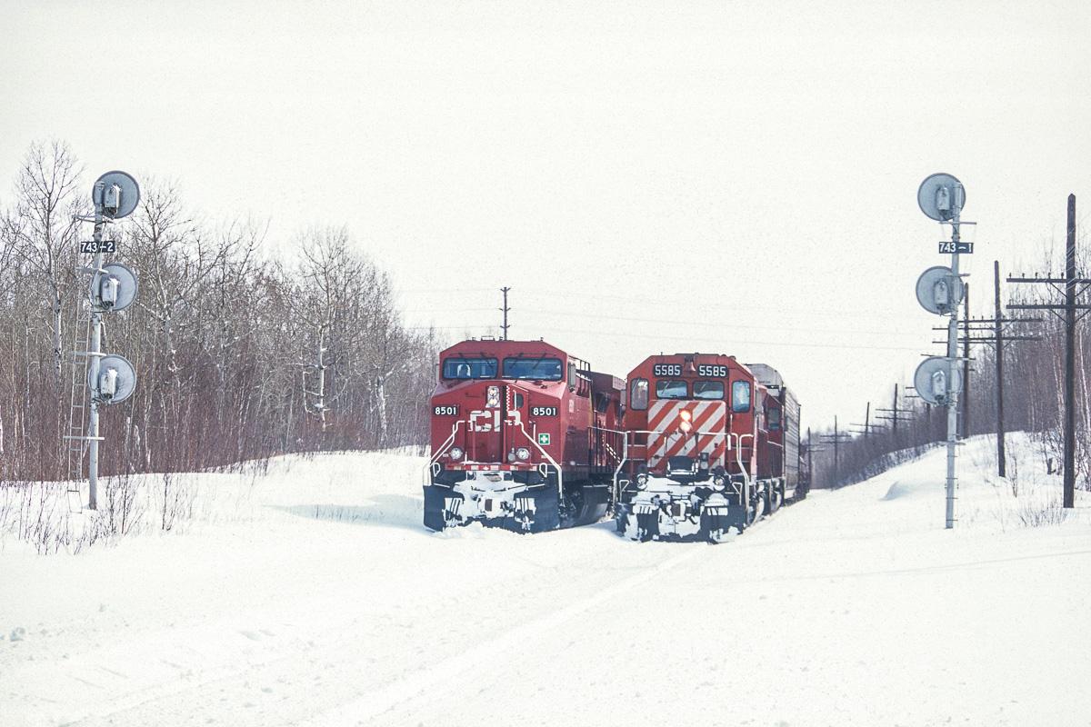 Deux convois attendent la fin des opérations de maintenance pour continuer leur route plus vers l'ouest.