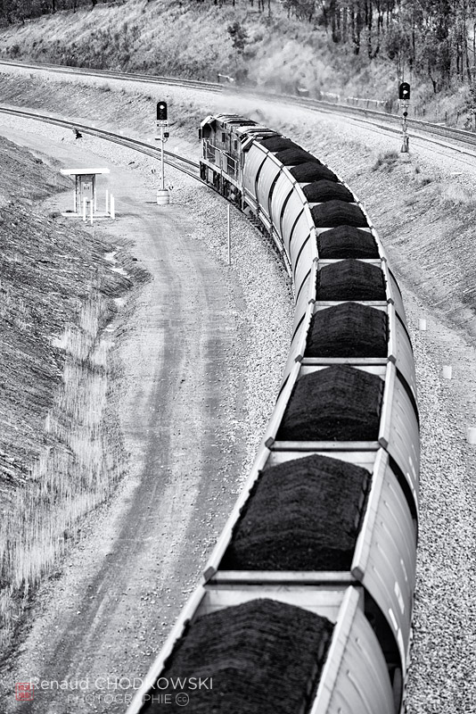 Deux locomotives expriment toute leur puissance lors de l'ascension de la rampe de Minimbah , près de Singleton.