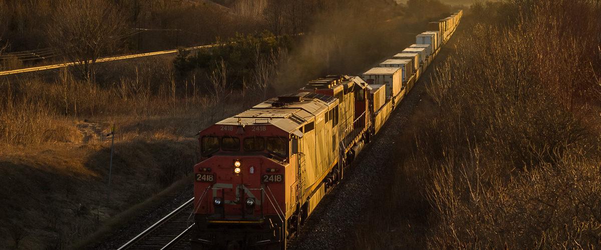 L'immensité des trains américains est visible sur ce convoi intermodal du Canadien National. 03/2006