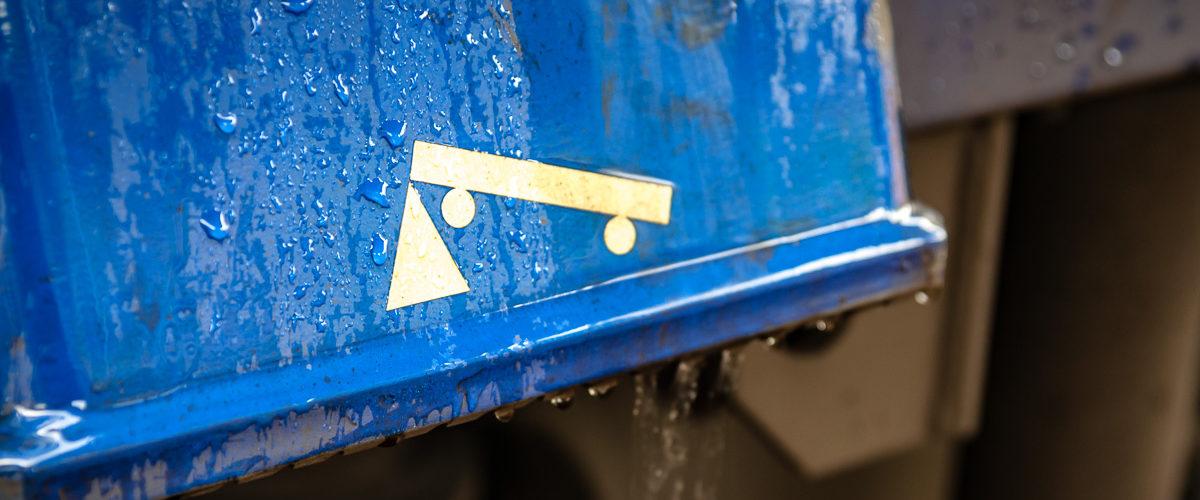 Un matin sous la pluie (La Ferté Allais, Juin 2010)