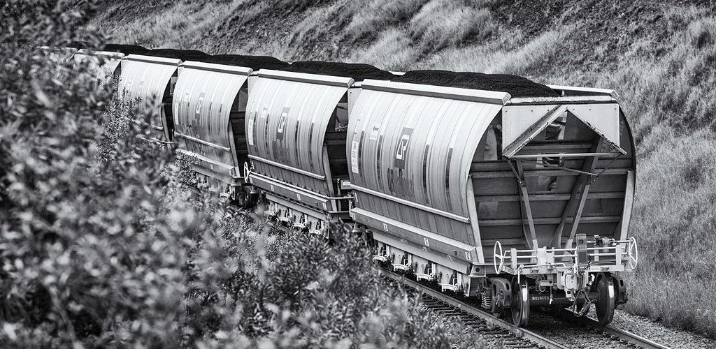 Lors de la prise de vue, ces wagons venaient tout juste d'être introduits sur les lignes de la Hunter Valley.
